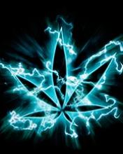 176x220 cannabisne 2861cb77