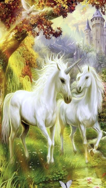 360x640 unicorn xJ0QHFmf