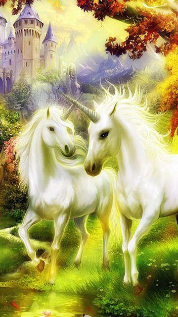 360x640 unicorns 47iP9FNl